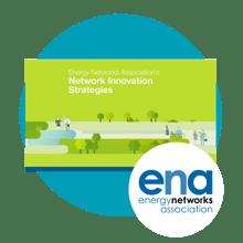 ENA Industry strategies